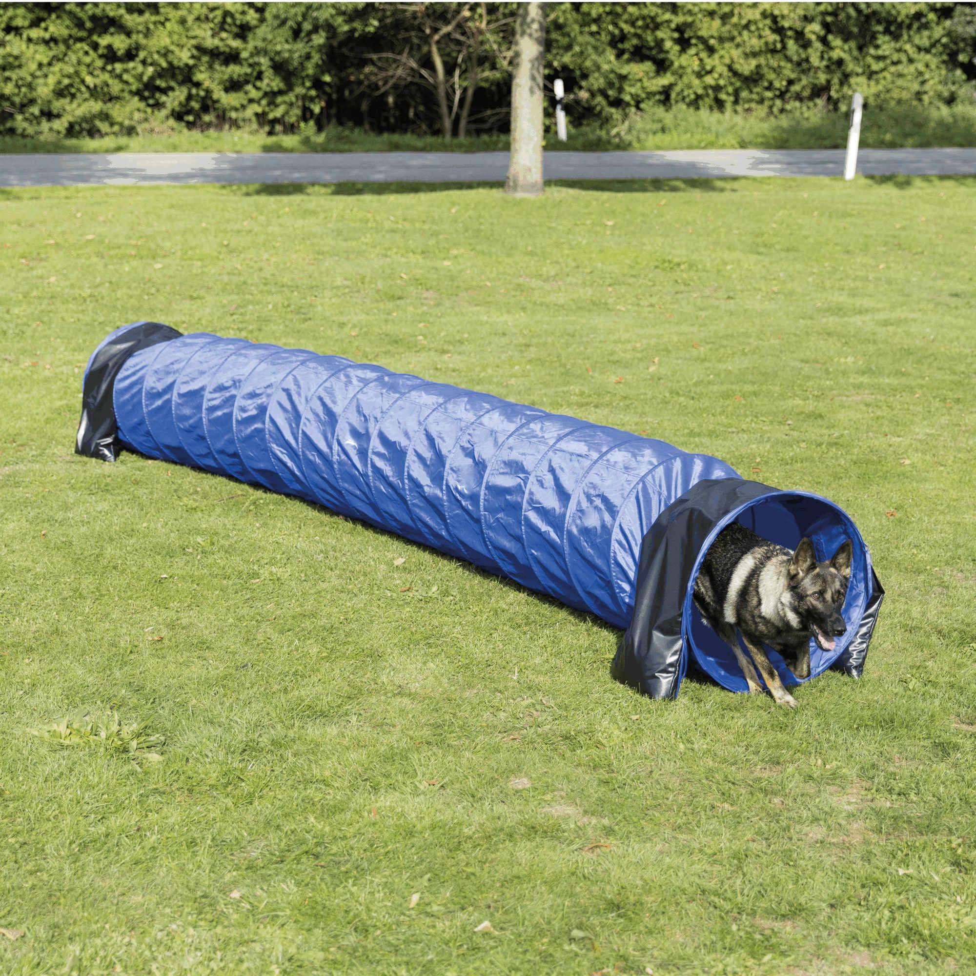 Trixie Dog Activity Agility Basic Tunnel ø 60cm / 5 m, blau