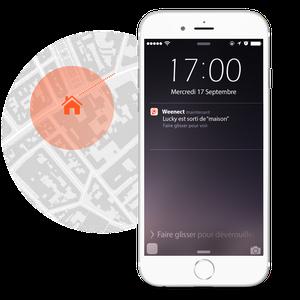 Weenect GPS-Tracker Dogs
