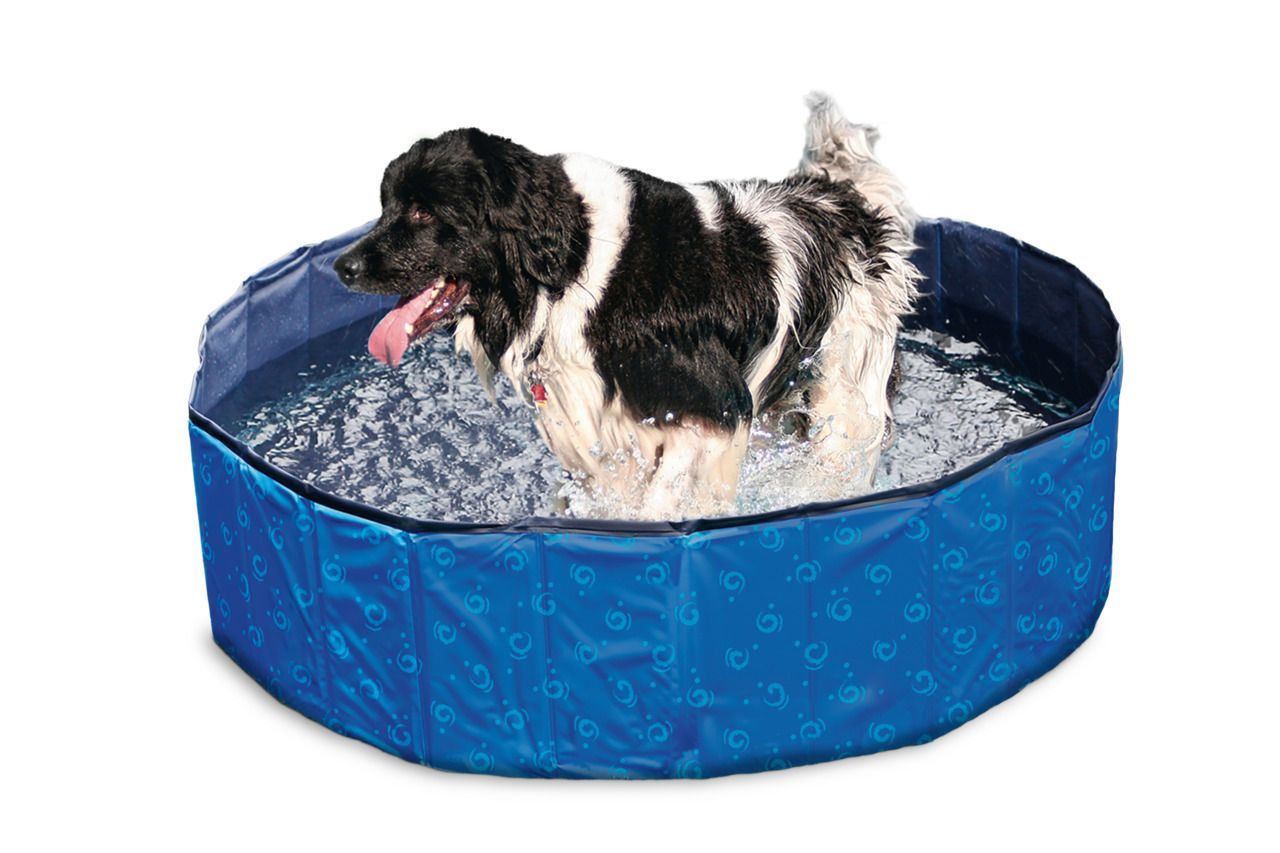 Karlie Doggy Pool blau