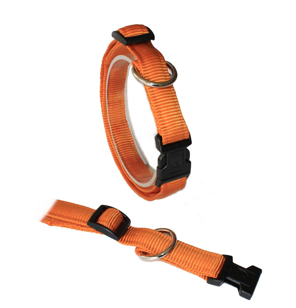 Koch UNI-Klick-Halsband gepolstert