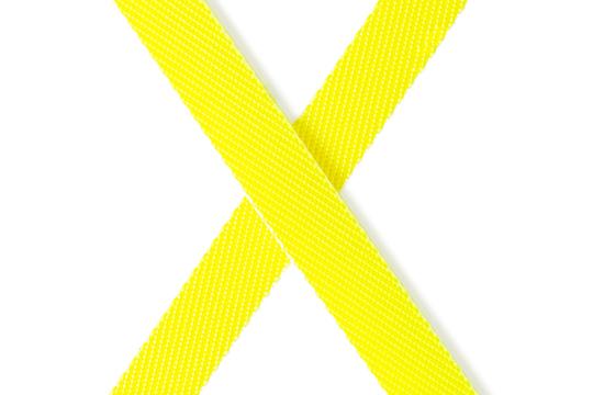Flexi New Neon mit Seil