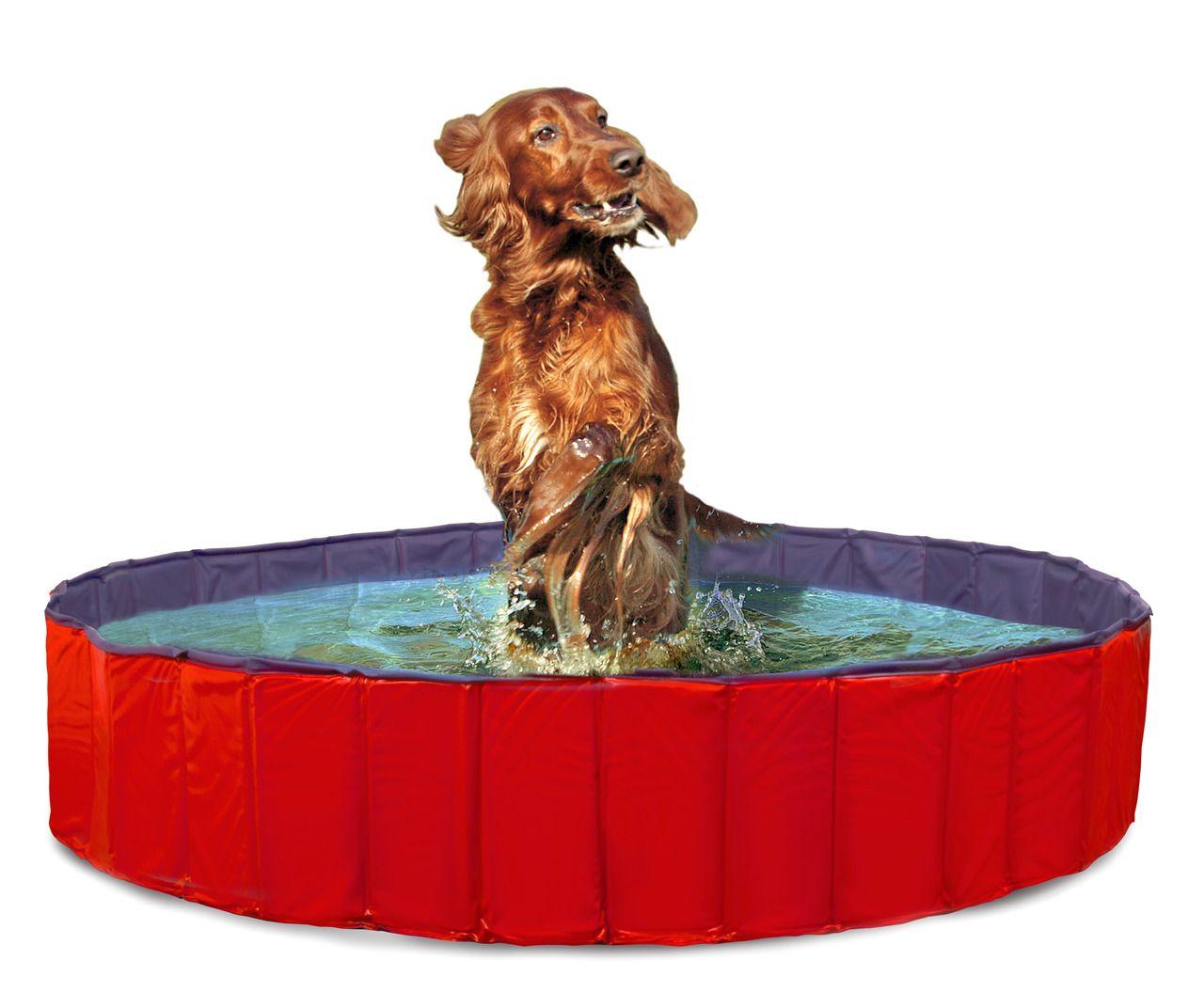 Karlie Doggy Pool blau/rot