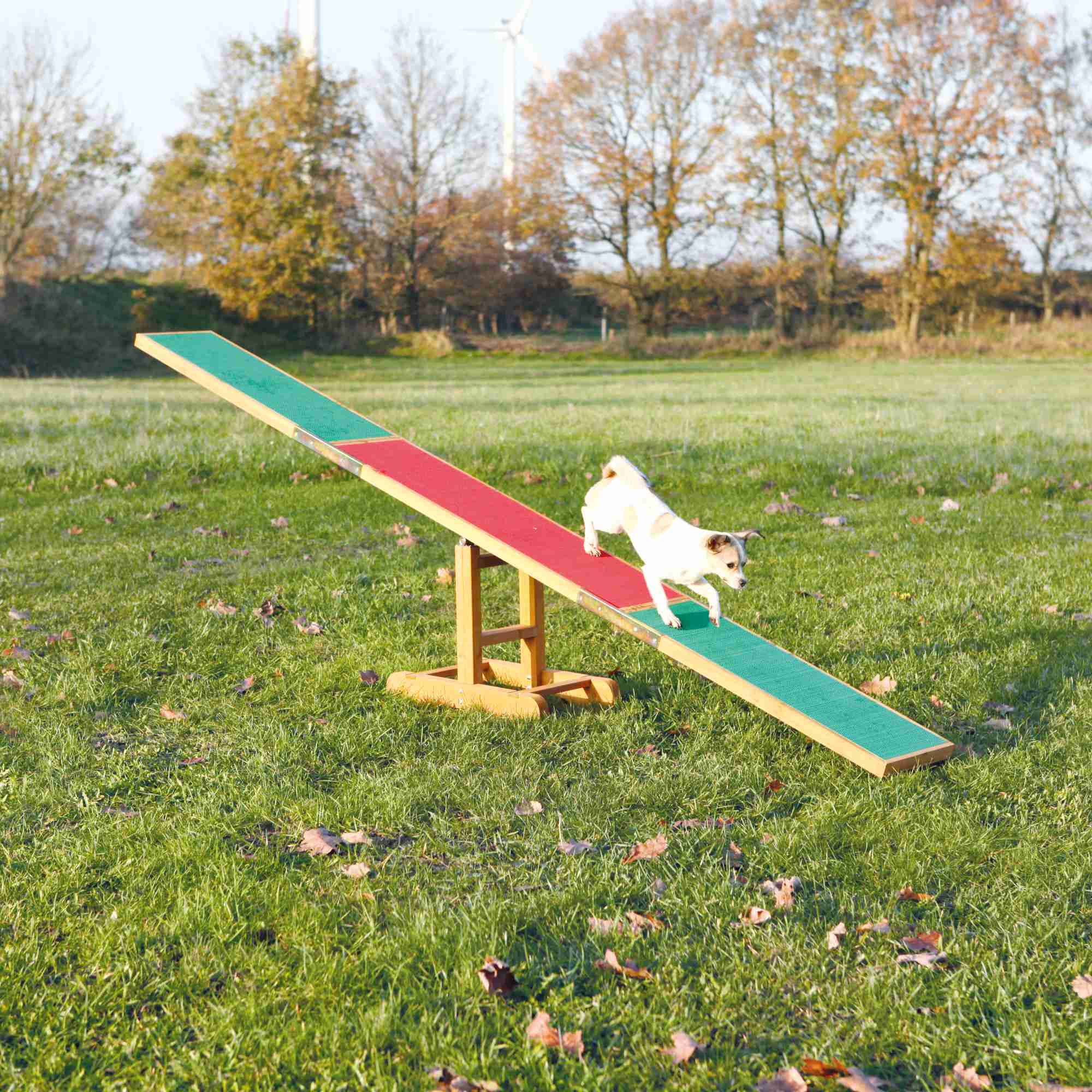 Trixie Dog Activity Agility Wippe 300 × 54 × 34cm