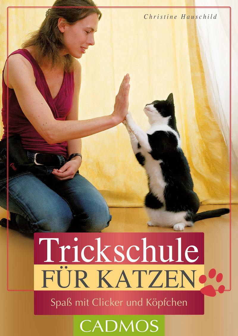 """Cadmos - Trickschule für Katzen """"Hauschild"""""""