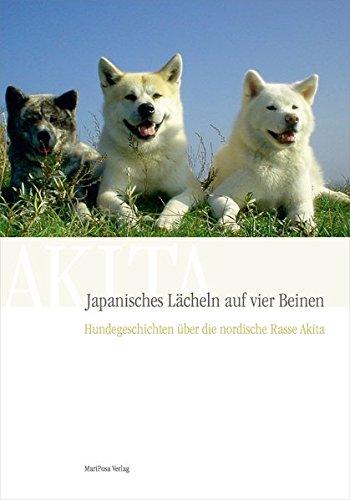 Akita Jap. Lächeln auf vier Beinen