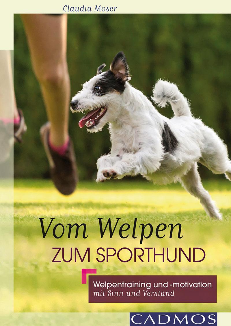 Cadmos - Vom Welpen zum Sporthund