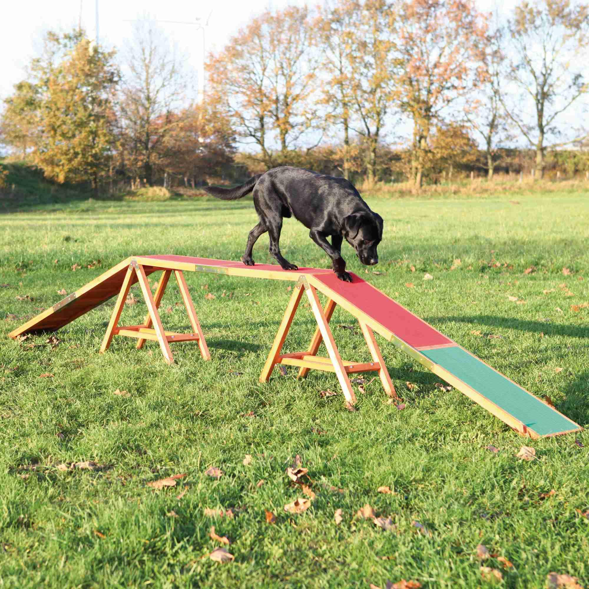 Trixie Dog Activity Agility Steg 456 × 64 × 30cm
