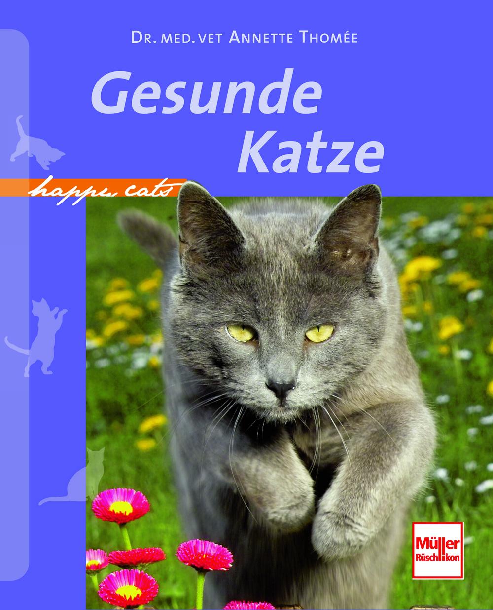 Müller-Rüschlikon - Gesunde Katze