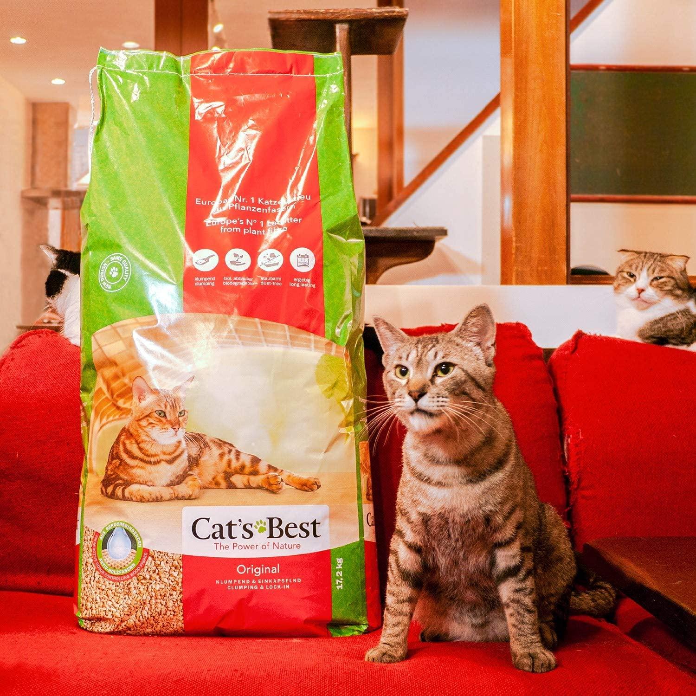 Cats Best Original