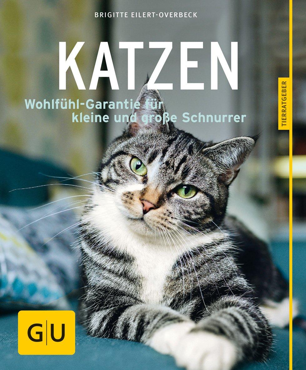 Katzen [Brigitte Eilert-Overbeck]