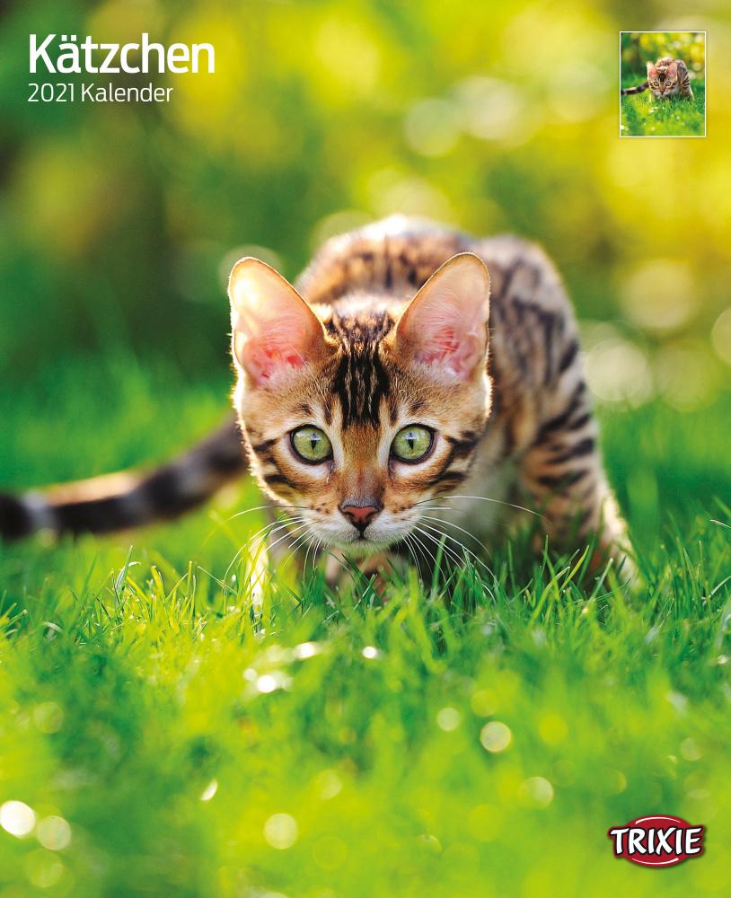 Trixie Kalender 2021 Kätzchen